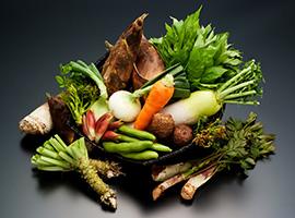 季節の食材料理